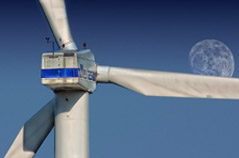 Effects of Wind Generation on Electricity Market Prices