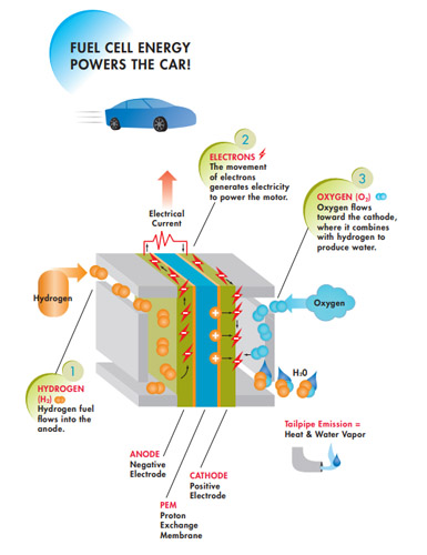 Fuel cell electric vehicle - marketing and outreach